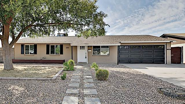 3717 E Ludlow Drive, Phoenix, AZ 85032 (MLS #6150283) :: Midland Real Estate Alliance