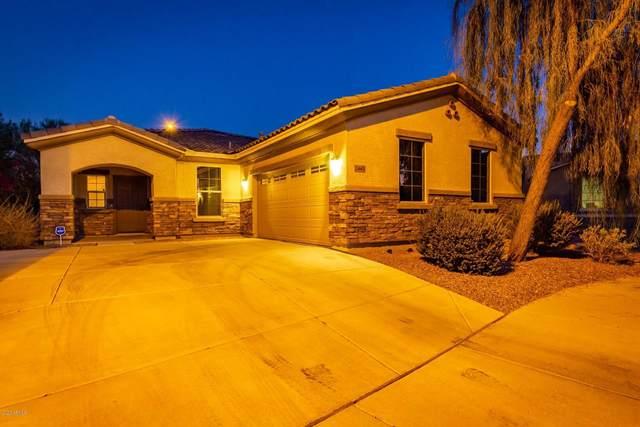 2445 S 169TH Lane, Goodyear, AZ 85338 (MLS #6150288) :: Long Realty West Valley