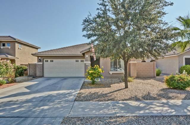 16569 W Maricopa Street, Goodyear, AZ 85338 (MLS #6150289) :: Long Realty West Valley
