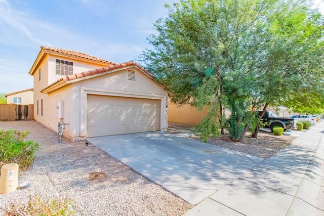 1466 E Stirrup Lane, San Tan Valley, AZ 85143 (MLS #6150301) :: Power Realty Group Model Home Center