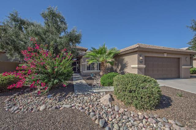 3250 N 150TH Drive, Goodyear, AZ 85395 (MLS #6150312) :: Midland Real Estate Alliance