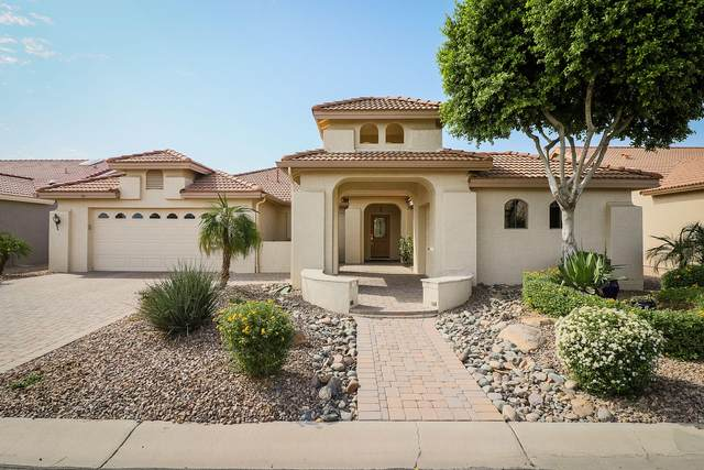 14975 W Mulberry Drive, Goodyear, AZ 85395 (MLS #6150322) :: Long Realty West Valley