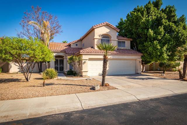 5978 W Aurora Drive, Glendale, AZ 85308 (MLS #6150334) :: The Property Partners at eXp Realty