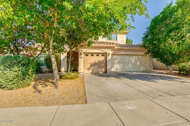 16325 N 170TH Lane, Surprise, AZ 85388 (MLS #6150365) :: ASAP Realty