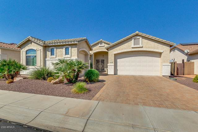 18234 W Stinson Drive, Surprise, AZ 85374 (MLS #6150418) :: Arizona Home Group