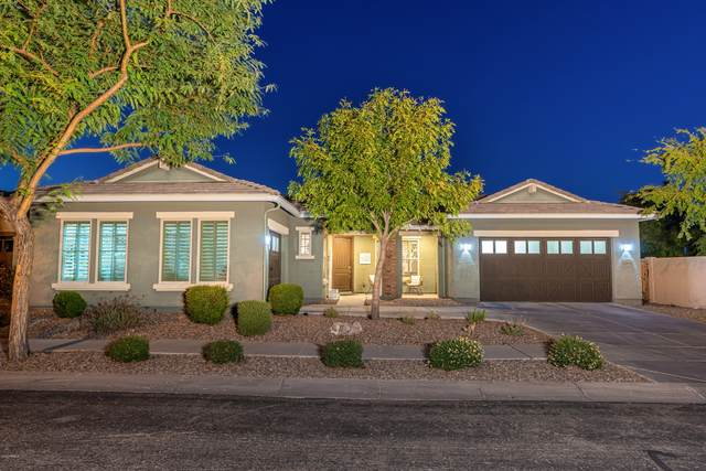 3456 E Harrison Street, Gilbert, AZ 85295 (MLS #6150423) :: The Property Partners at eXp Realty