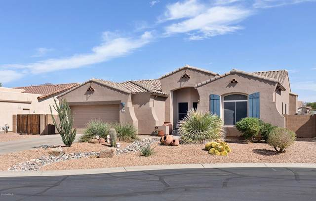 8159 S Bull Dog Court, Gold Canyon, AZ 85118 (MLS #6150478) :: The Riddle Group