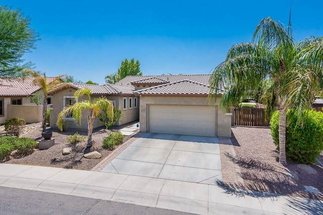 309 W Balsam Drive, Chandler, AZ 85248 (MLS #6150499) :: The Property Partners at eXp Realty