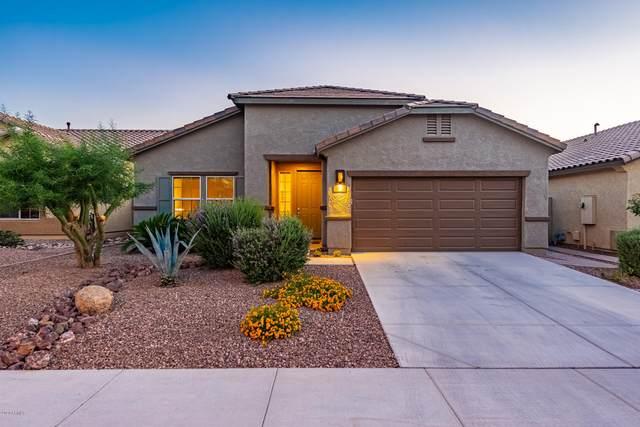 10751 W Desert Elm Lane, Peoria, AZ 85383 (MLS #6150524) :: Midland Real Estate Alliance