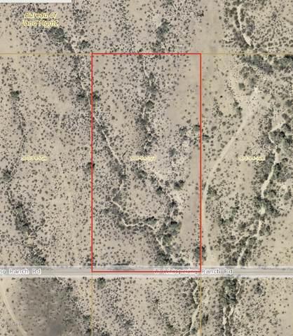 35220 W Whispering Ranch Road, Unincorporated County, AZ 85390 (#6150550) :: Long Realty Company