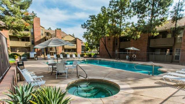 200 E Southern Avenue #245, Tempe, AZ 85282 (MLS #6150558) :: The Everest Team at eXp Realty