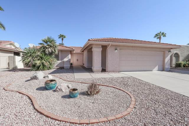 25847 S Greencastle Drive, Sun Lakes, AZ 85248 (MLS #6150559) :: Midland Real Estate Alliance