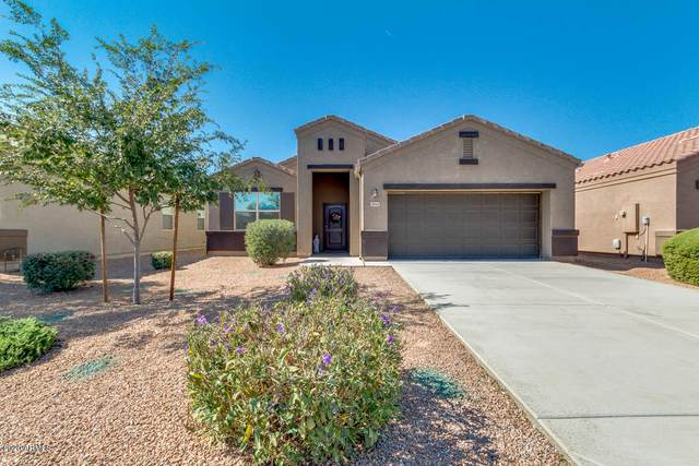 28968 N Carnelian Drive, San Tan Valley, AZ 85143 (MLS #6150619) :: D & R Realty LLC