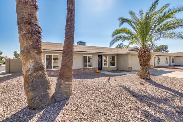 1753 E Irwin Avenue, Mesa, AZ 85204 (MLS #6150638) :: D & R Realty LLC