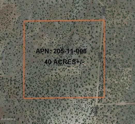 2626 Muriel Drive, Seligman, AZ 86337 (MLS #6150663) :: The W Group
