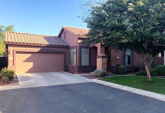 1201 S Roger Way, Chandler, AZ 85286 (MLS #6150675) :: D & R Realty LLC