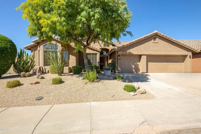 4934 E Skinner Drive, Cave Creek, AZ 85331 (MLS #6150676) :: My Home Group