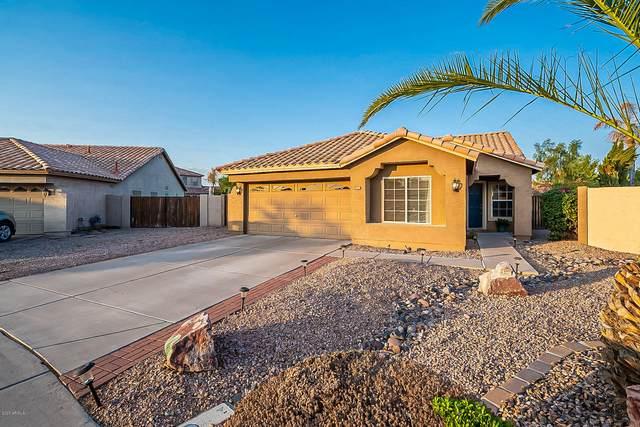 655 S Camellia Drive, Chandler, AZ 85225 (MLS #6150719) :: neXGen Real Estate