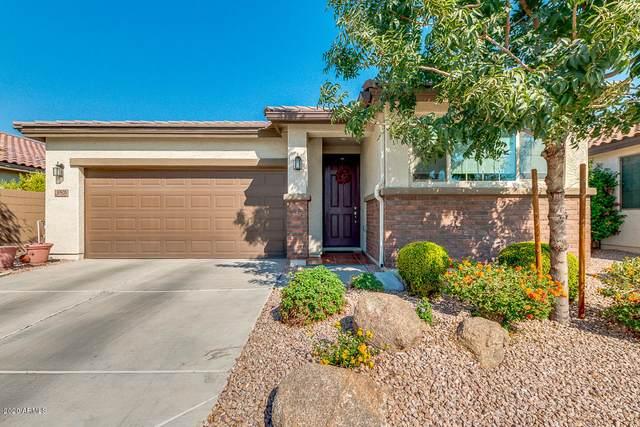 10926 W Oak Ridge Drive, Sun City, AZ 85351 (MLS #6150759) :: The Helping Hands Team