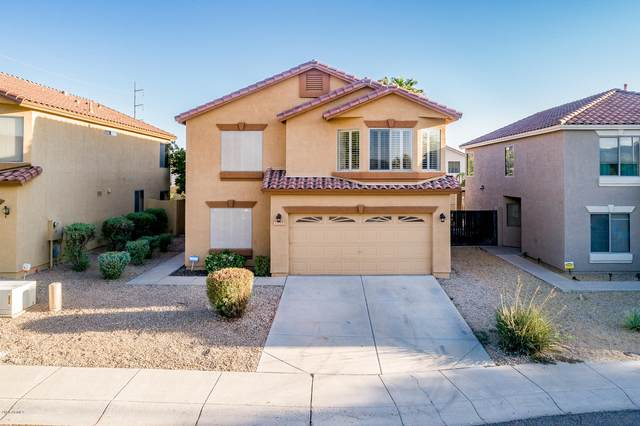 1123 E Ross Avenue, Phoenix, AZ 85024 (MLS #6150830) :: My Home Group