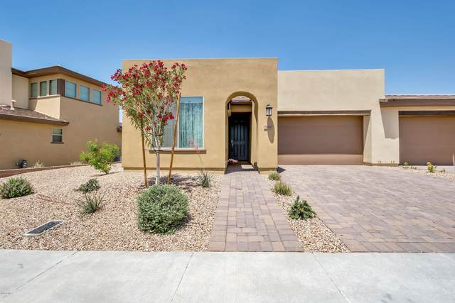 880 E Verde Boulevard, San Tan Valley, AZ 85140 (MLS #6150832) :: NextView Home Professionals, Brokered by eXp Realty