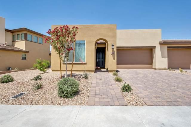 880 E Verde Boulevard, San Tan Valley, AZ 85140 (MLS #6150832) :: The Dobbins Team