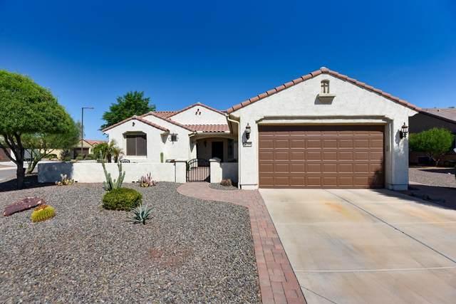 26266 W Horsham Drive, Buckeye, AZ 85396 (MLS #6150835) :: Power Realty Group Model Home Center