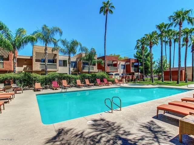 3500 N Hayden Road #2003, Scottsdale, AZ 85251 (MLS #6150842) :: Walters Realty Group