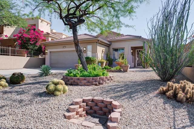 13615 N 12TH Way, Phoenix, AZ 85022 (MLS #6150851) :: Devor Real Estate Associates