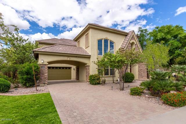 2748 E Lowell Avenue, Gilbert, AZ 85295 (MLS #6150874) :: BVO Luxury Group