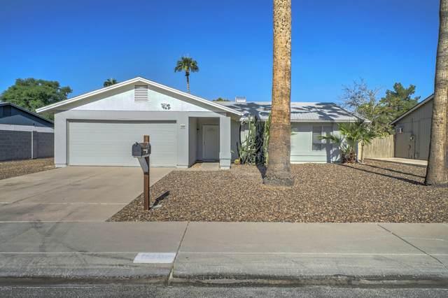 3302 E Angela Drive, Phoenix, AZ 85032 (MLS #6150917) :: Sheli Stoddart Team | M.A.Z. Realty Professionals