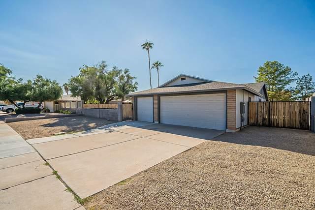 2206 N Cholla Street, Chandler, AZ 85224 (MLS #6150937) :: TIBBS Realty
