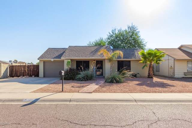 20255 N 14th Avenue, Phoenix, AZ 85027 (MLS #6151036) :: Power Realty Group Model Home Center