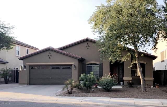 13771 W Earll Drive, Avondale, AZ 85392 (MLS #6151041) :: Sheli Stoddart Team | M.A.Z. Realty Professionals