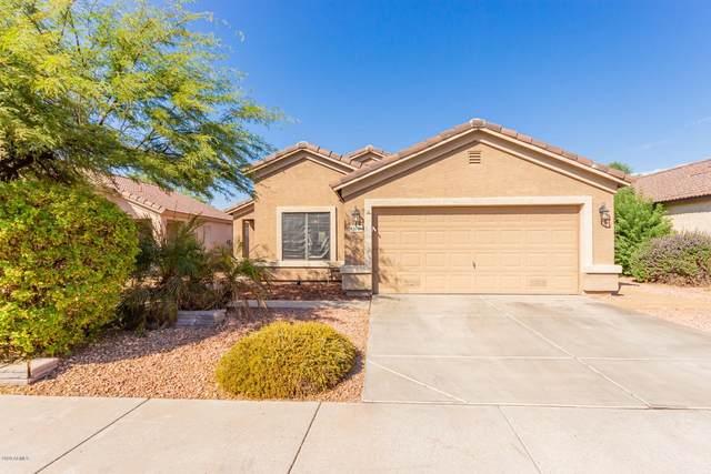 2040 E Danbury Road, Phoenix, AZ 85022 (MLS #6151050) :: Midland Real Estate Alliance