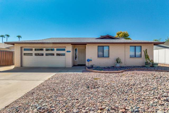 1415 W Rosal Place, Chandler, AZ 85224 (MLS #6151069) :: Lucido Agency