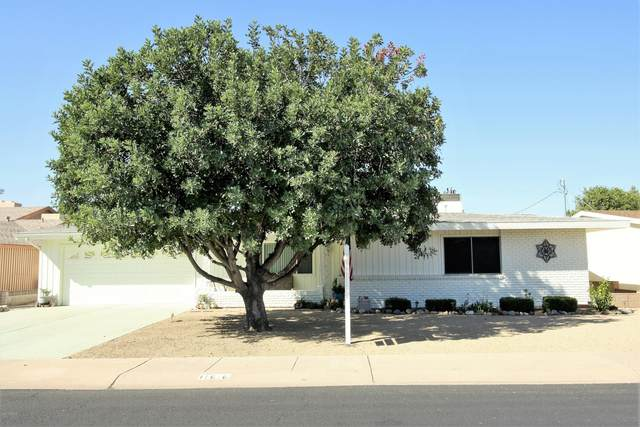 11616 N Balboa Drive, Sun City, AZ 85351 (MLS #6151149) :: Nate Martinez Team
