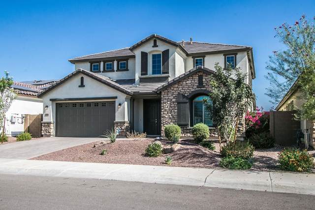 22421 N 96TH Drive, Peoria, AZ 85383 (MLS #6151167) :: Power Realty Group Model Home Center