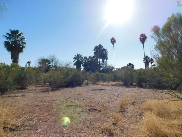 1393 E Silver King Road, Queen Valley, AZ 85118 (MLS #6151183) :: The Riddle Group