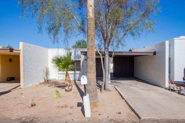 716 E Dobbins Road, Phoenix, AZ 85042 (MLS #6151193) :: Scott Gaertner Group