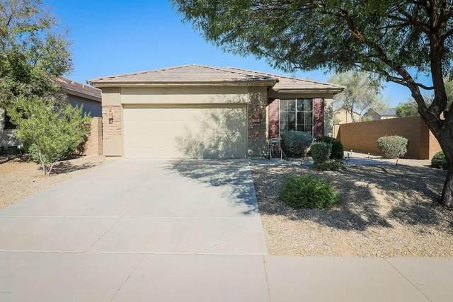 18036 W Purdue Avenue, Waddell, AZ 85355 (MLS #6151203) :: Arizona Home Group