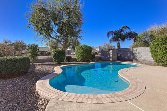 4771 E Meadow Land Drive, San Tan Valley, AZ 85140 (MLS #6151252) :: The Helping Hands Team