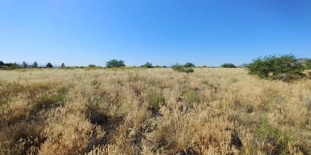 4 ac Jay Kay Drive, Hereford, AZ 85615 (MLS #6151263) :: The Riddle Group