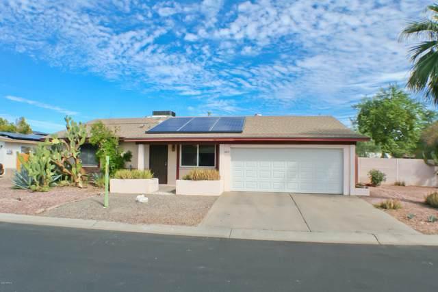 4411 W Cathy Circle, Glendale, AZ 85308 (MLS #6151269) :: BVO Luxury Group