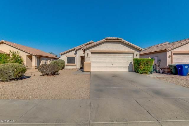 12622 W Dreyfus Drive, El Mirage, AZ 85335 (MLS #6151292) :: neXGen Real Estate
