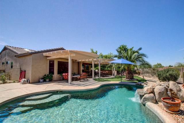 21634 N Black Bear Lodge Drive, Surprise, AZ 85387 (MLS #6151324) :: Midland Real Estate Alliance
