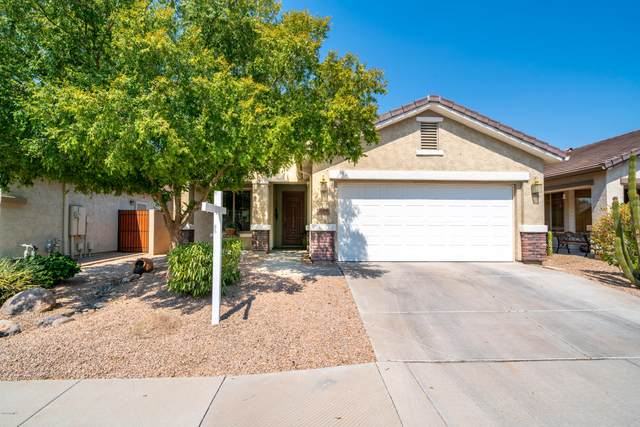 676 W Twin Peaks Parkway, San Tan Valley, AZ 85143 (MLS #6151348) :: NextView Home Professionals, Brokered by eXp Realty