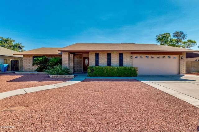 4201 W Helena Drive, Glendale, AZ 85308 (MLS #6151362) :: Yost Realty Group at RE/MAX Casa Grande