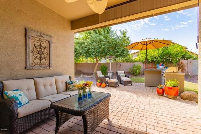 6472 S Adobe Drive, Chandler, AZ 85249 (MLS #6151417) :: Lucido Agency