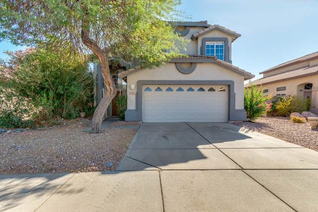 4023 W Rose Garden Lane, Glendale, AZ 85308 (MLS #6151422) :: D & R Realty LLC